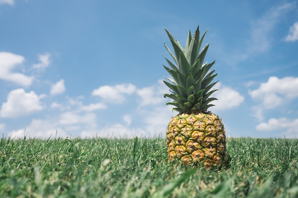 pineapple - What are the benefits one can gain by using the treatment for anti–aging?